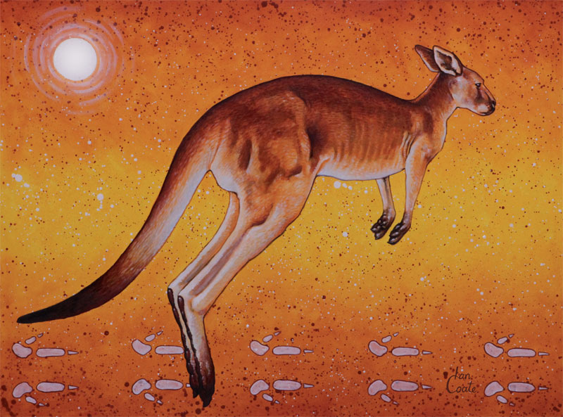 Red Kangaroo Art