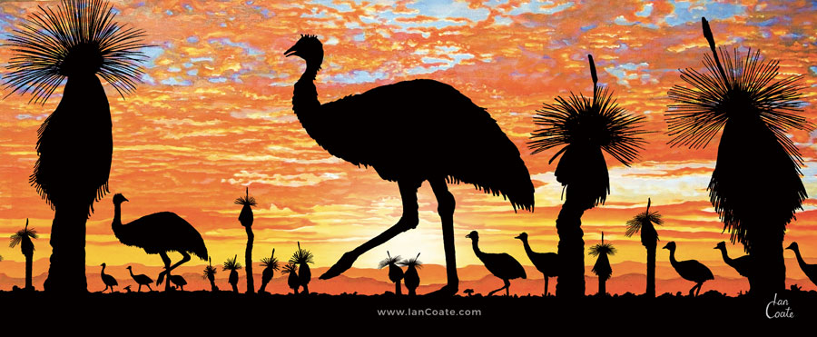 Emu Sunset an Australian Sunset