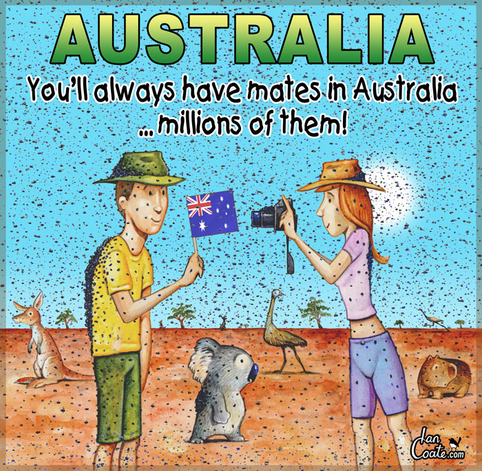 Australian cartoon about mates and flies