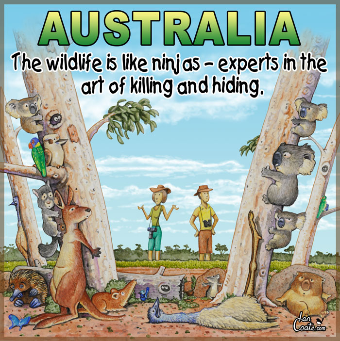 Australian cartoon about the wildlife