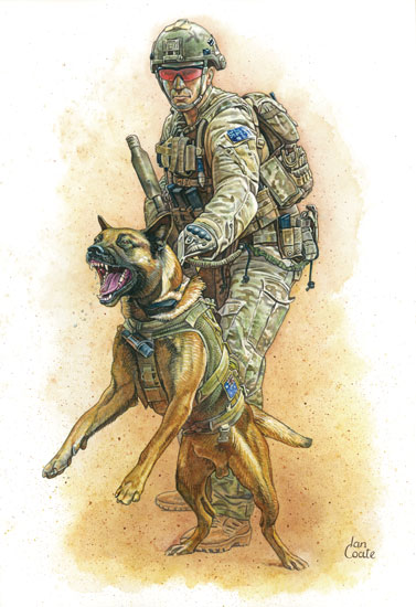 SAS Military Working Dogs